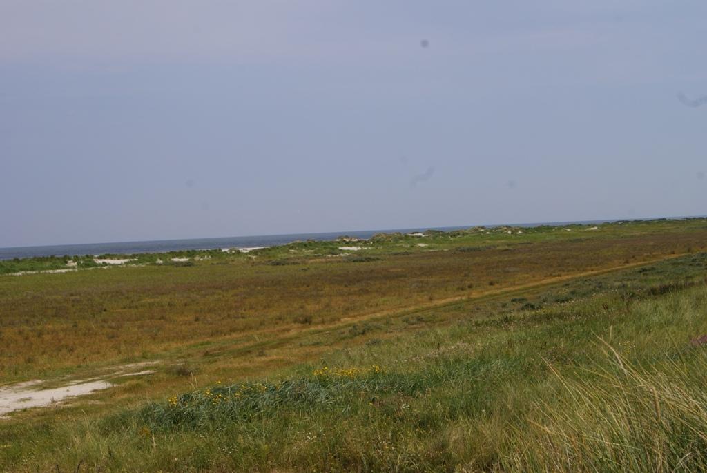 paseando por la isla Schiermonnikoog en Holanda
