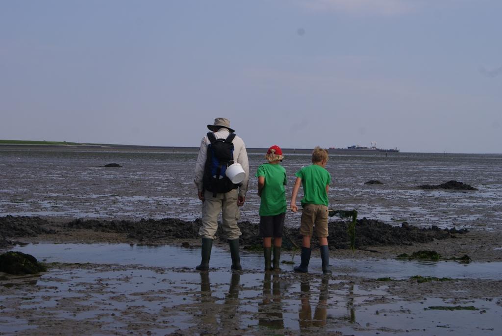 niños y su padre investigando el fondo marino durante wadlopen en la isla de Schiermonnikoog en Holanda