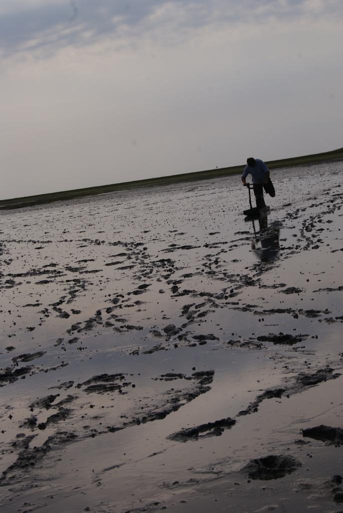 paisaje de barro durante la marea baja en la isla de Schiermonnikoog Holanda