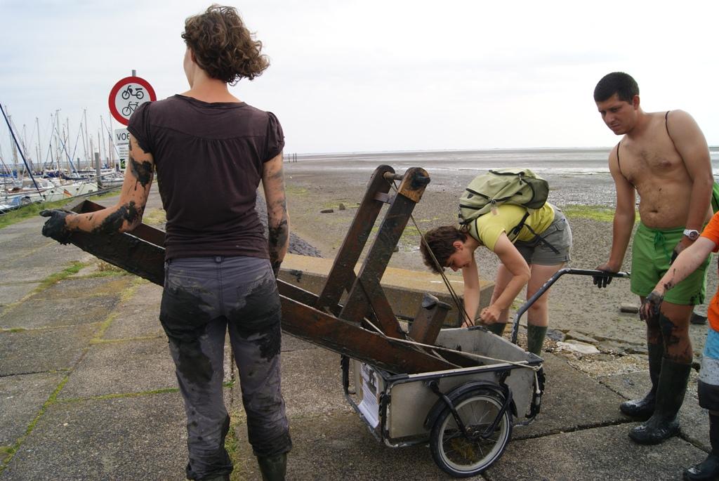 recogiendo los trineos de barro despues de la carrera en la isla de Schiermonnikoog Holanda