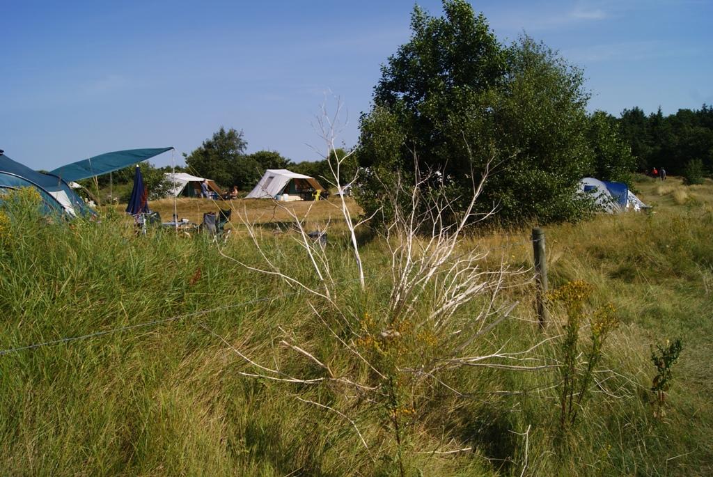 El territorio del camping Kampwinkel en Schiermonnikoog Holanda