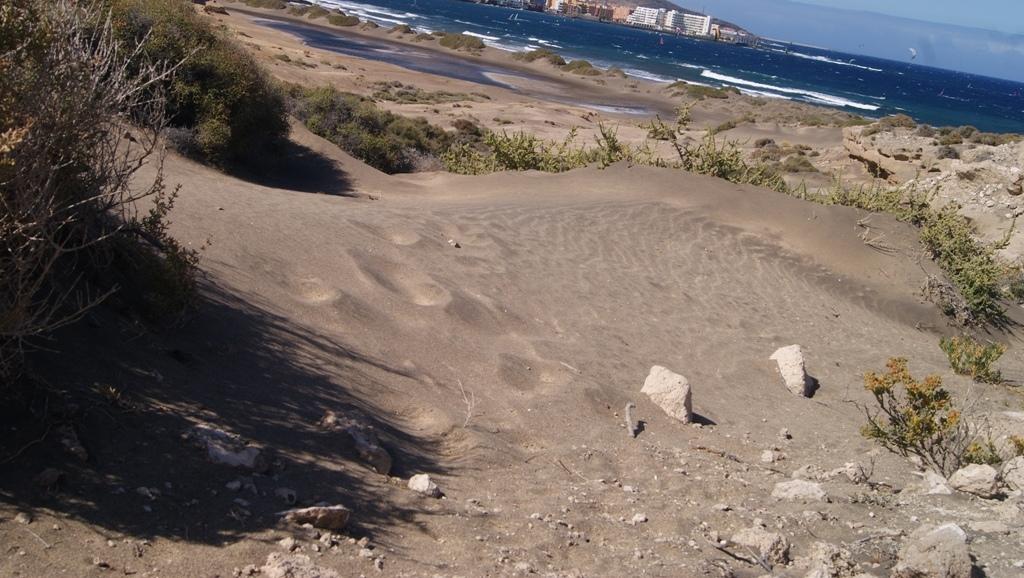 Tenerife Montaña Roja