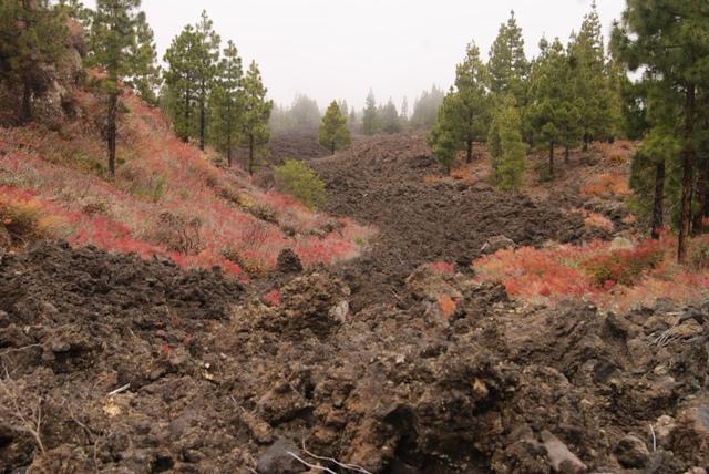 Senderos volcánicos