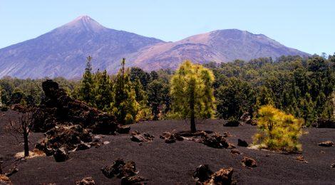 Volcán Chinyero - Ruta para Conocerlo