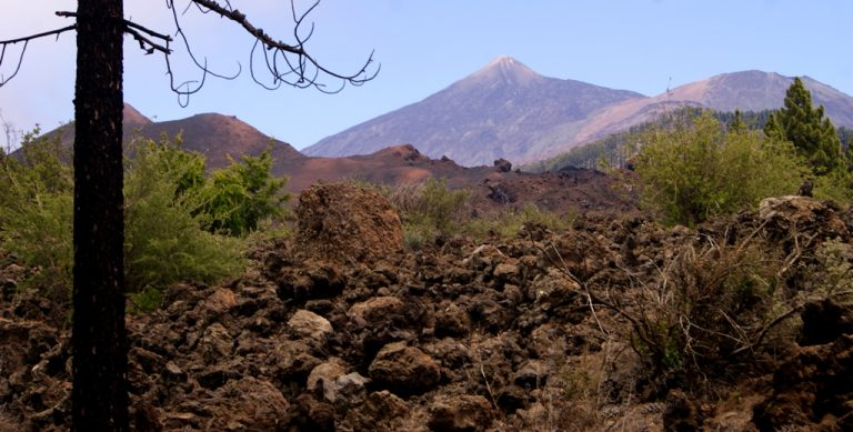 me fascina el Teide y el Pico Viejo... Se ven desde muchos puntos de la isla
