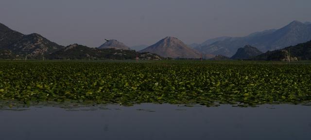 Lago Skadar, Montenegro, Crna Gora, turismo