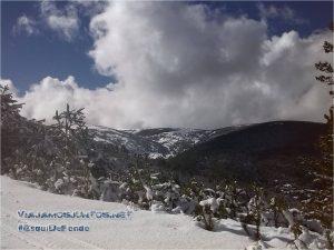 De esquí de fondo por la Sierra de Madrid