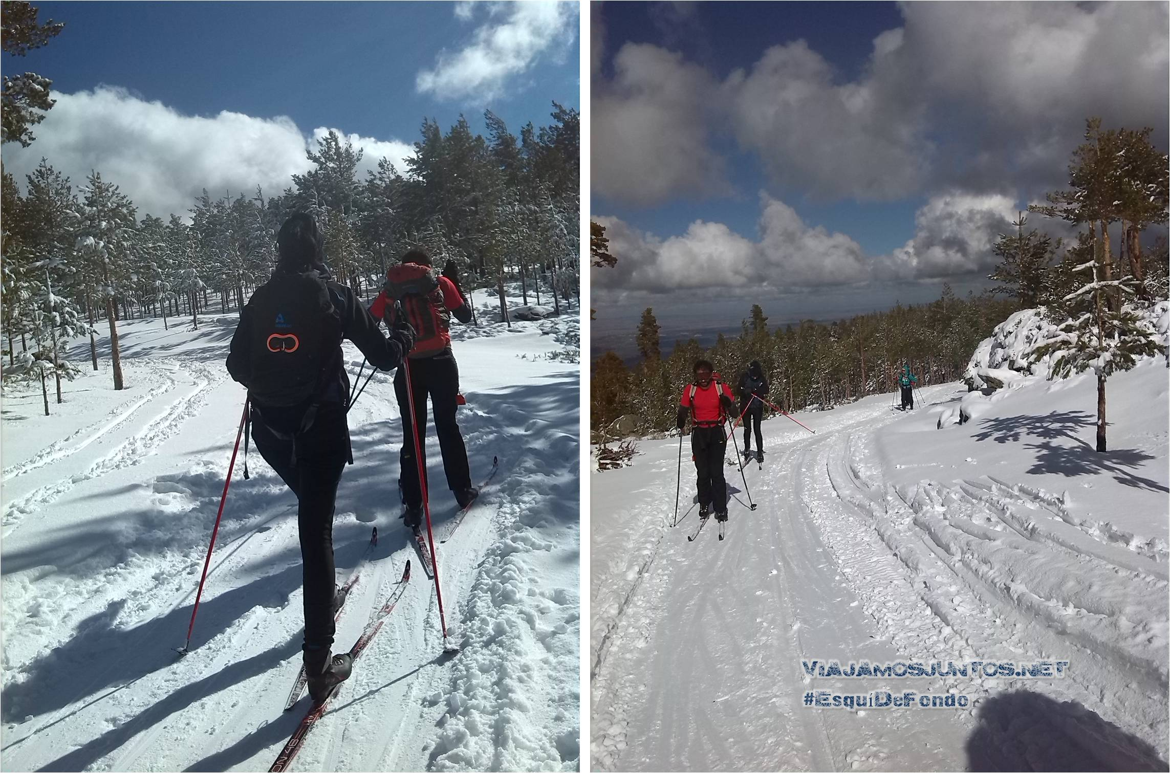 esqui, esqui de fondo, cotos, navafria, navacerrada, lozoya, esquiar, consejos, donde, madrid