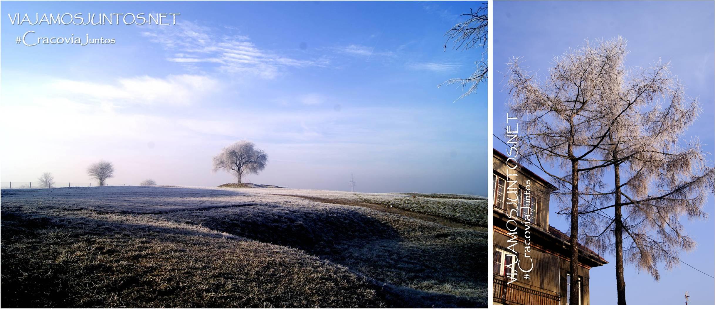 Cracovia, Polonia, Poland, Krakow, viajar por libre, escapadas, guia practica, tiempo