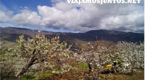 Valle del Jerte en un día. ¿Es posible?