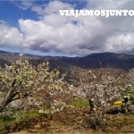 Valle del Jerte, Jerte, Cerezo en flor, Primavera en Jerte, rutas, escapadas, pueblos con encanto