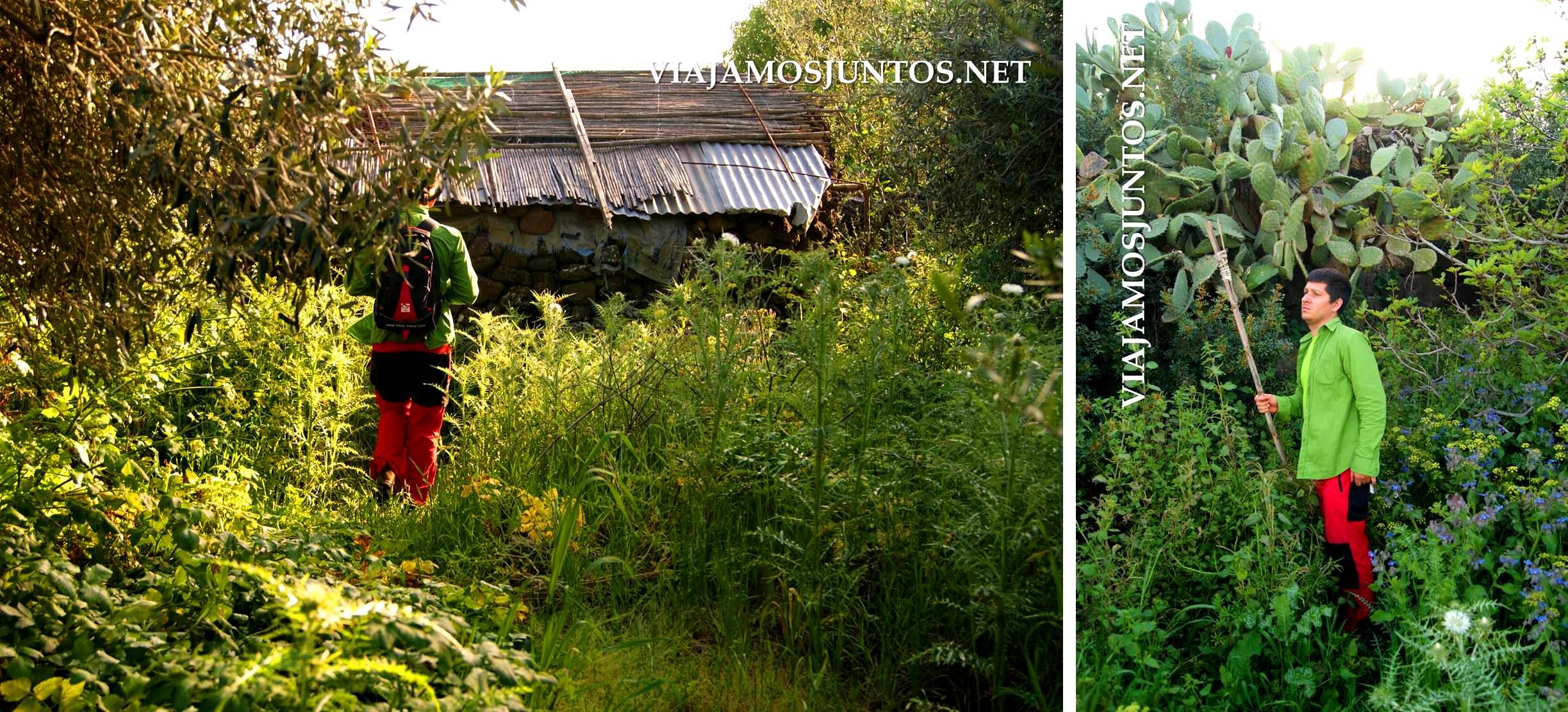 Buscando el nuraghe escondido entre la vegetación... también encontramos un nuraghe reutilizado ;)))