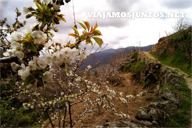 Valle del Jerte, Jerte, Cerezo en flor, Primavera en Jerte, rutas, escapadas, pueblos con encanto, rutas, senderismo, Pilones, ermita santa María