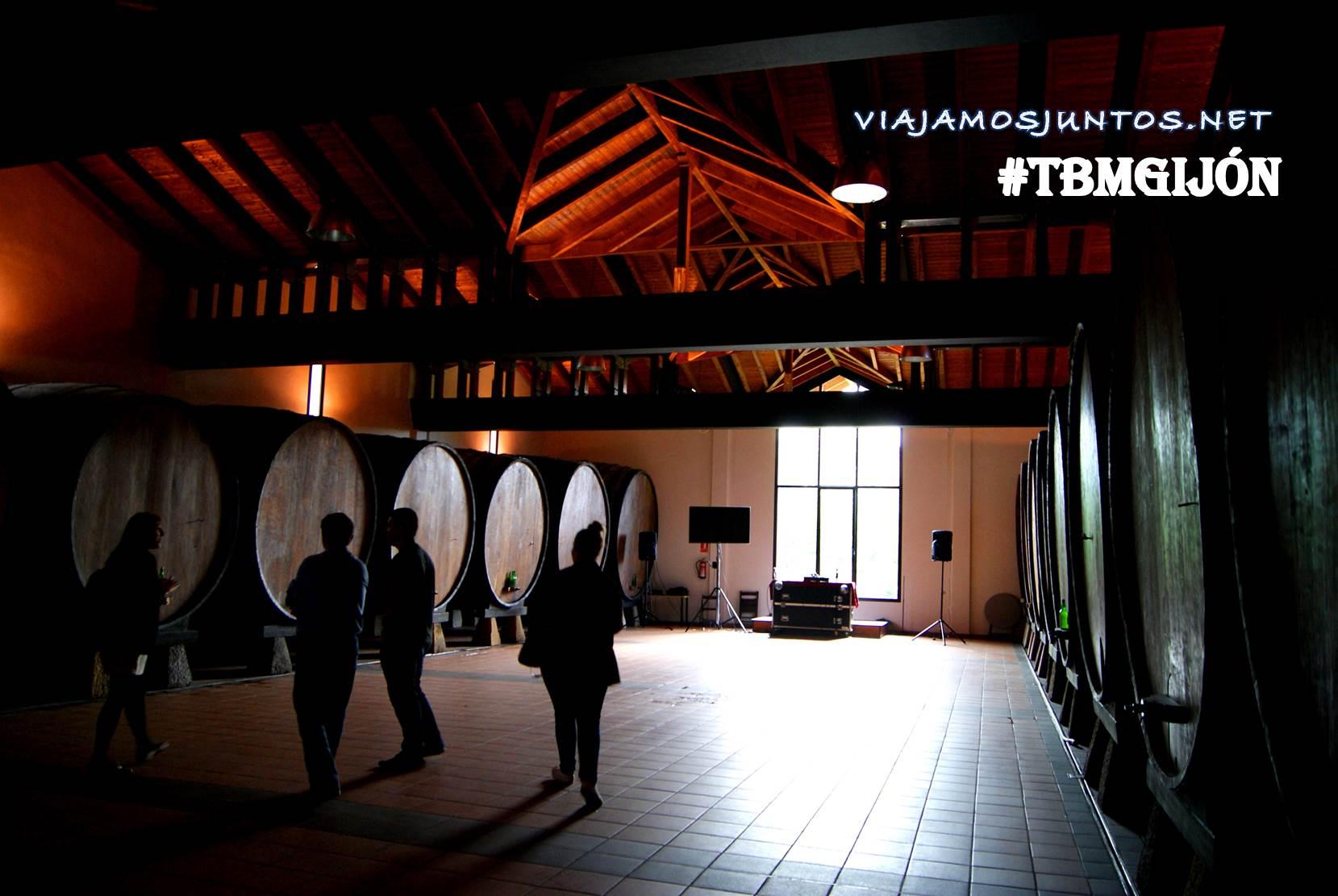 Gijón, Asturias, ecomuseo minero, TBM, TBMGijón, bloggers, travel bloggers meeting, surf, talasoponiente, acuario, jardín botánico, gallar, sidrería, sidra