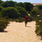 Doñana, asperillo, laguna Jaral, parque natural, parque nacional, parque dunar, dunas, dunas fijas, huelva, andalucia,