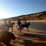 Doñana, pasodoble, asperillo, laguna Jaral, parque natural, parque nacional, parque dunar, dunas, dunas fijas, huelva, andalucia, acantilado, senderismo, rutas, el Rocío, caballos