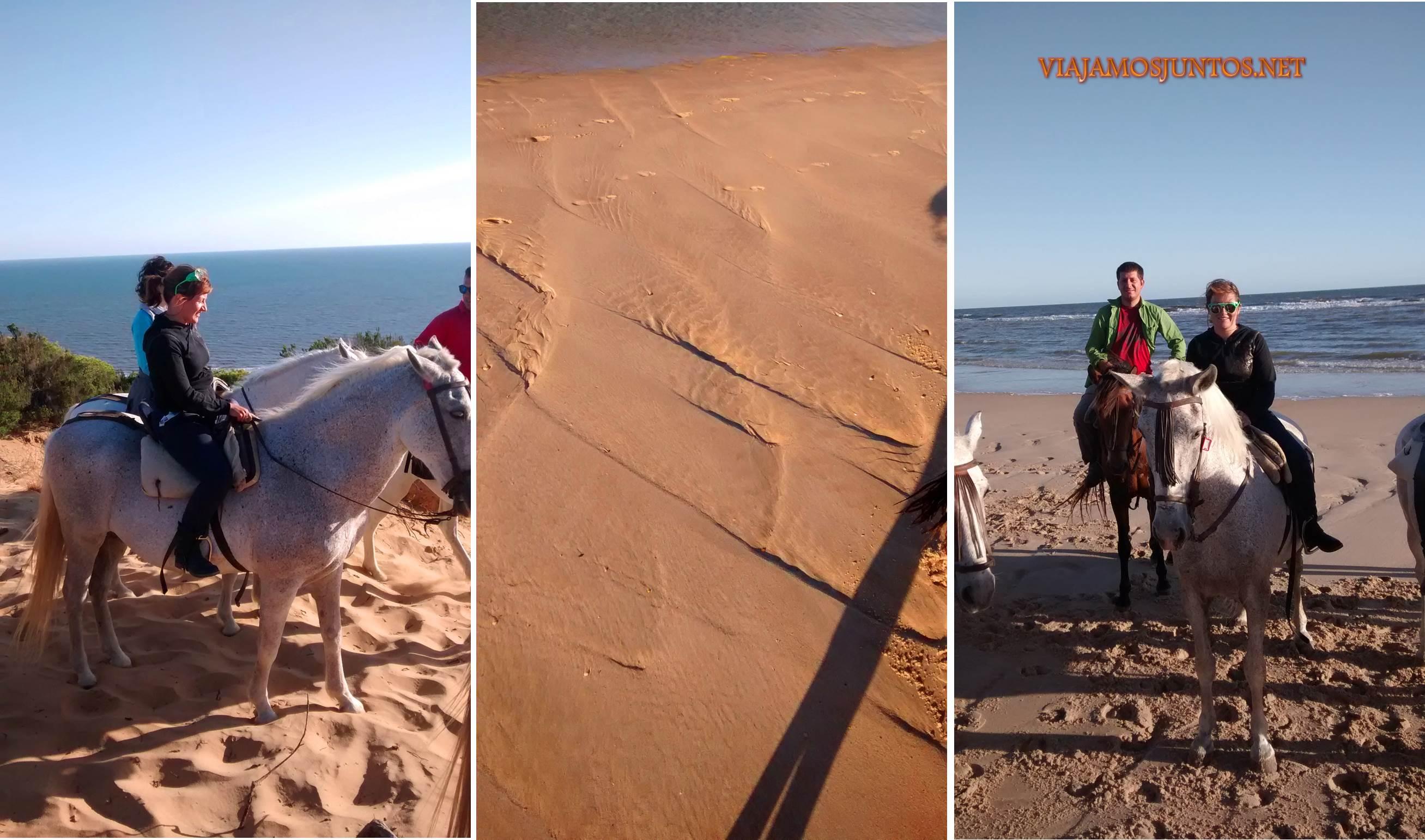 Doñana, pasodoble, asperillo, laguna Jaral, parque natural, parque nacional, parque dunar, dunas, dunas fijas, huelva, andalucia, acantilado, senderismo, rutas, el Rocío, caballos