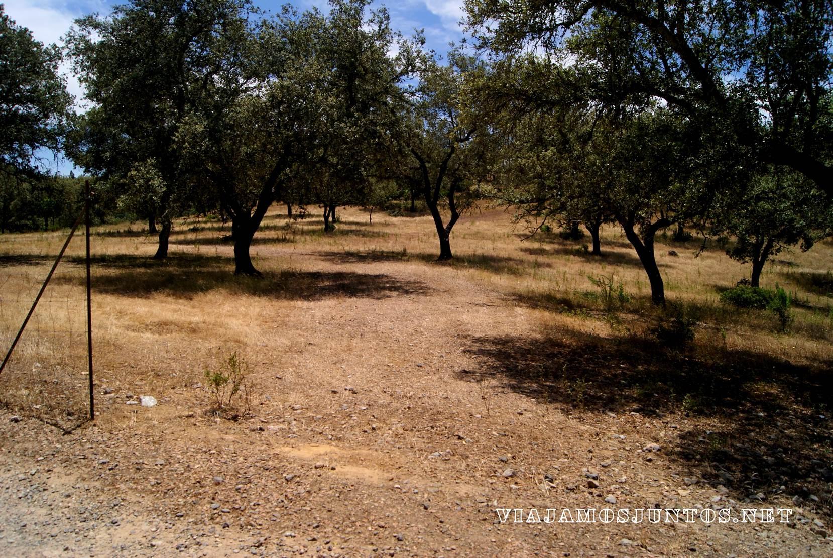 Huelva, dolmenes, ruta dolmenica, dolmenica, arqueologia, el pozuelo, descubrir, aventura, viajar por libre, andalucia