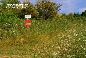Un desvío de la A52 y sus descubrimientos. Zona Ourense