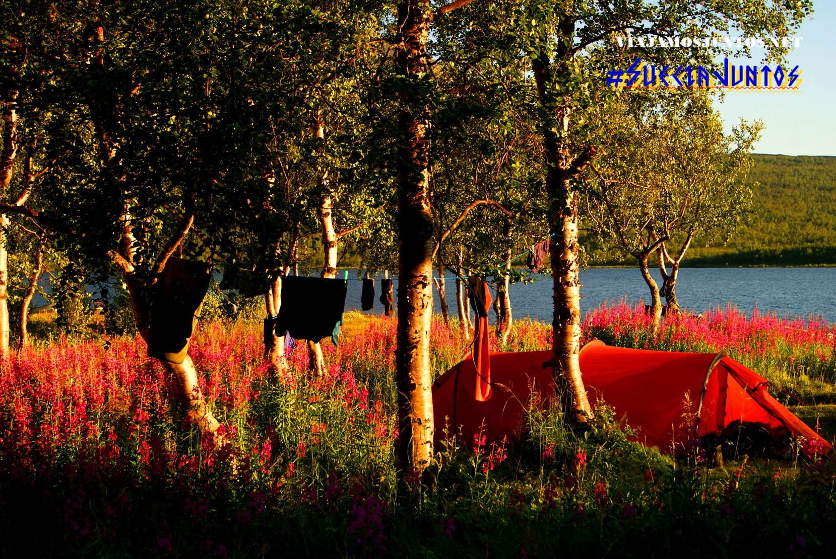 Kungsleden, Suecia, lagos, naturaleza, viajar por libre, vistas, paisajes, Laponia Sueca, inspiración, información práctica, tips, consejos, viajar por libre