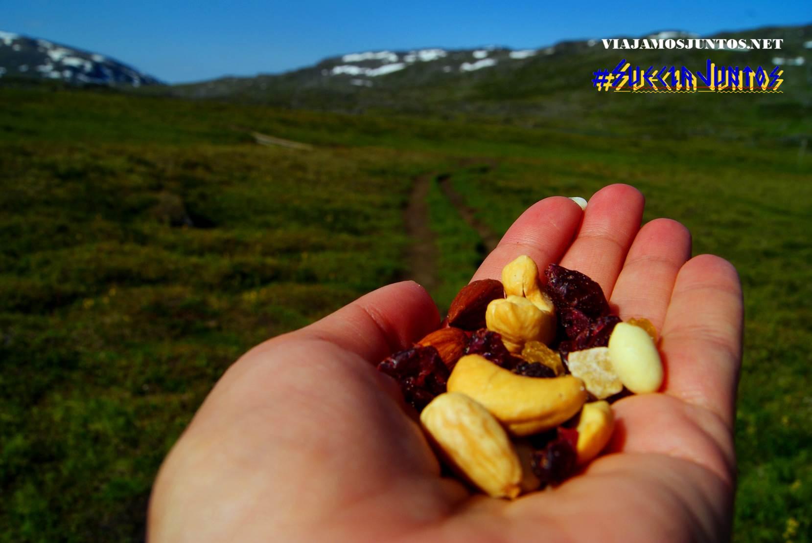 Kungsleden, Suecia, lagos, naturaleza, viajar por libre, vistas, paisajes, Laponia Sueca, inspiración, información práctica, tips, consejos, viajar por libre, alojamiento