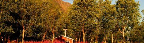 Kungsleden, Suecia, lagos, naturaleza, viajar por libre, vistas, paisajes, Laponia Sueca, inspiración, información práctica, tips, consejos, viajar por libre, alojamiento, diario