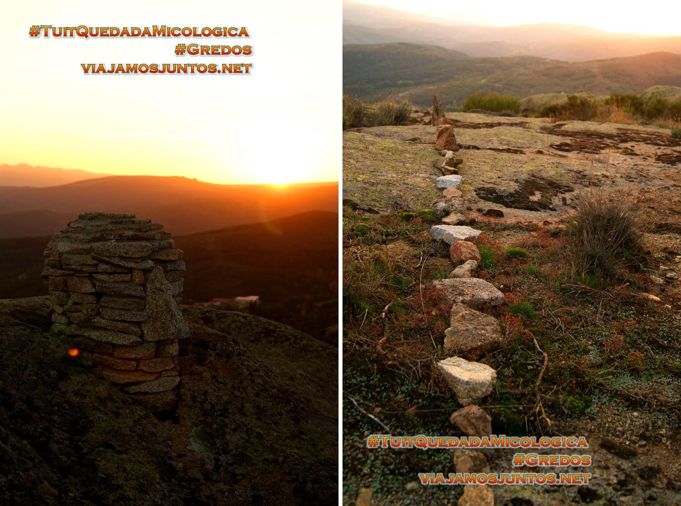 Arte anónimo en el Cerro Gallinero, Hoyocasero, Gredos, durante la #TuitQuedadaMicologica