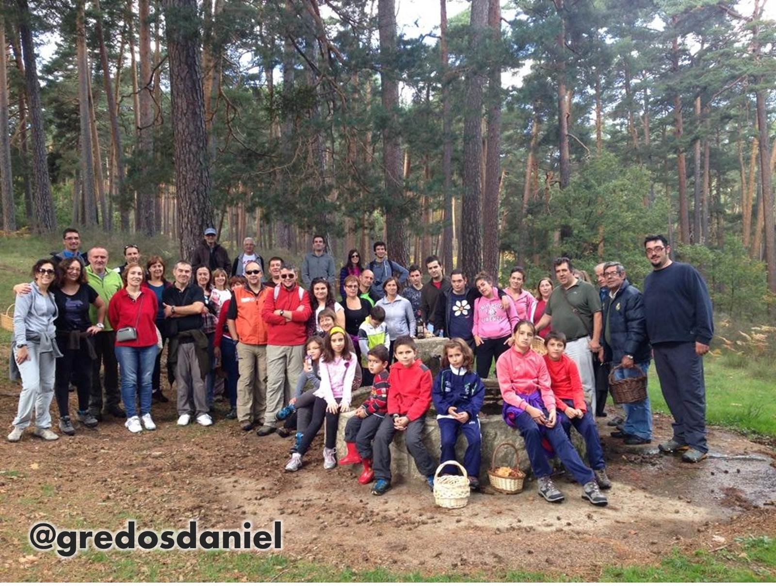 Foto de Familia, pinar de Hoyocasero, Gredos, #TuitQuedadaMicologica