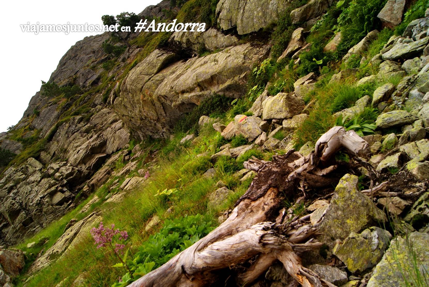 Entre el refugio de Siscaró y Juclá, Andorra trekking, Pirineo Oriental