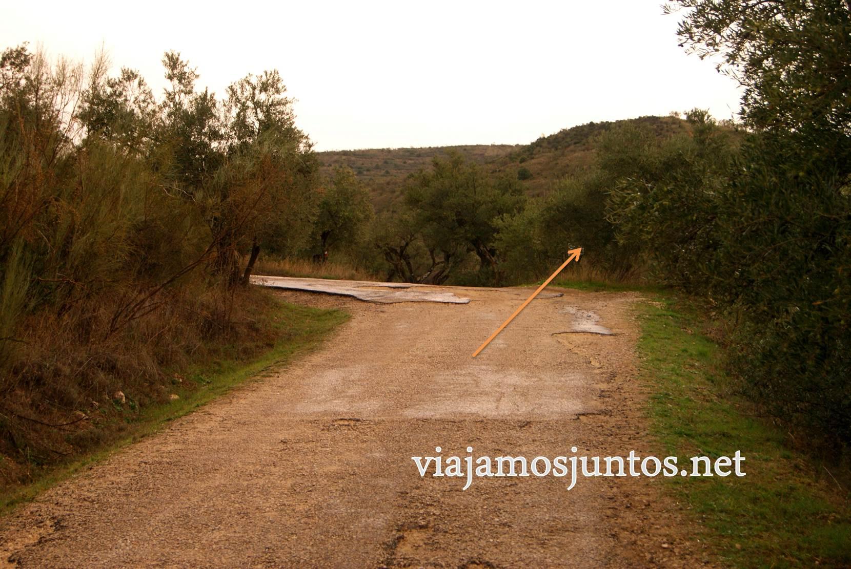 Ruta a las Cárcavas, Patones, Madrid; senderismo por sitios singulares de la Comunidad de Madrid; ruta alternativa