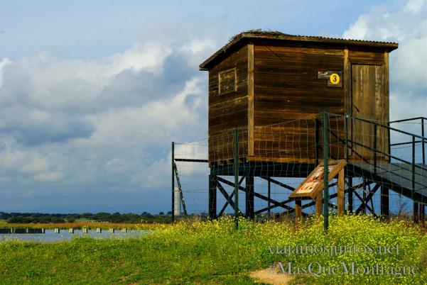 El observatorio del parque ornitológico de Arrocampo, Parque Nacional de Monfragüe y la Reserva de la Biosfera de Monfragüe, Extremadura