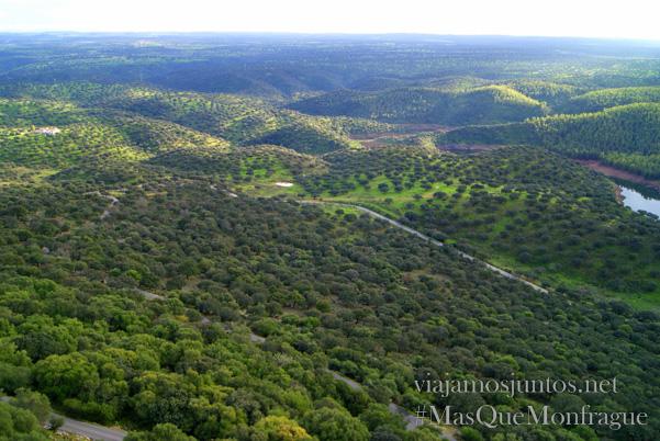 La dehesa desde el castillo de Monfragüe, Parque Nacional de Monfragüe y la Reserva de la Biosfera de Monfragüe, Extremadura