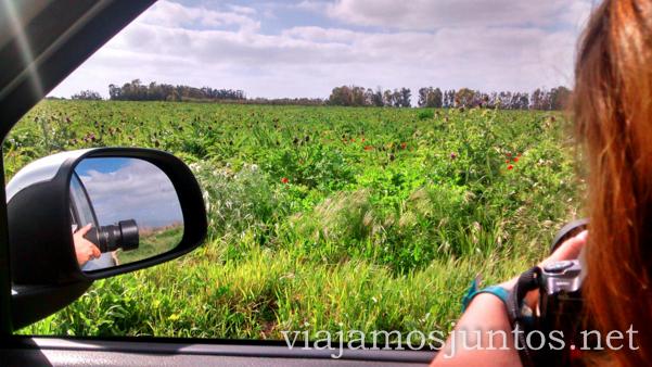 Fotos sin parar. literalmente. Viajamos Juntos, blog de Viajes