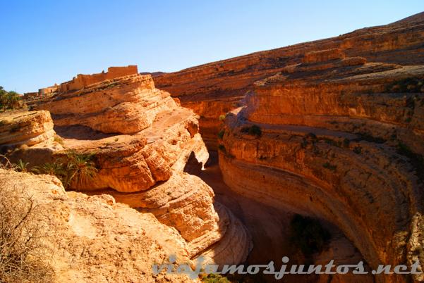 Oasis de Mides. Tozeur, el Sur de Túnez.