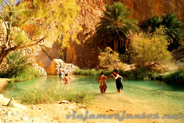No me digáis que no os apetece daros un chapuzón en este entorno... Oasis de Chebika. Tozeur, el Sur de Túnez.