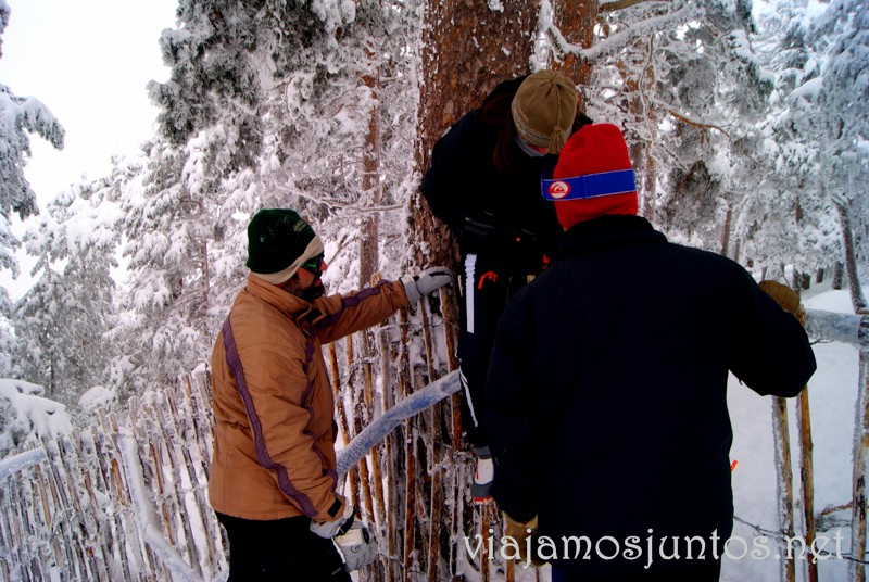 Un poco de aventura. Esquí de fondo, una ruta de senderismo y trineos, y mucha diversión en la nieve en Navacerrada, Sierra de Guadarrama, Parque Nacional. Madrid