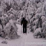 El circuito del esquí de fondo paralelo al Camino Schmit. Esquí de fondo, una ruta de senderismo y trineos, y mucha diversión en la nieve en Navacerrada, Sierra de Guadarrama, Parque Nacional. Madrid
