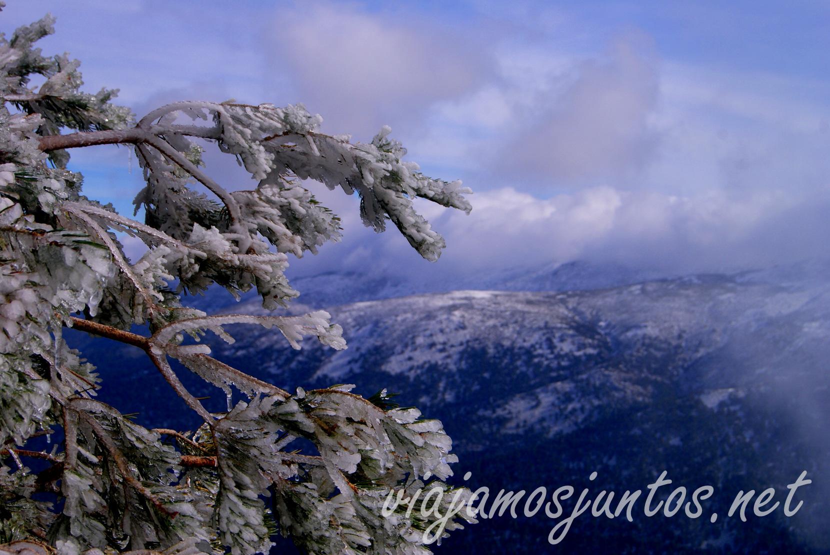 Los paisajes es el gran tesoro de la Sierra de Madrid Peñalara, el pico más alto de la comunidad de Madrid y Segovia. Ruta circular