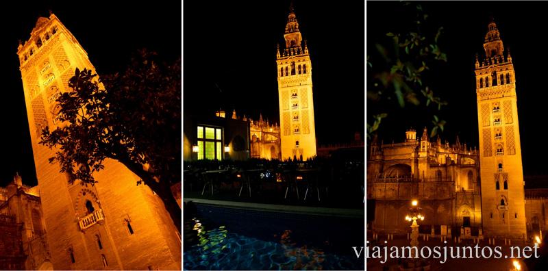 Vistas desde la terraza del hotel Doña María Que ver y que hacer en Sevilla durante un fin de semana. Sevilla Inside