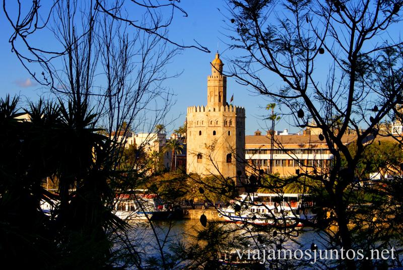 La torre del Oro Que ver y que hacer en Sevilla durante un fin de semana. Sevilla Inside