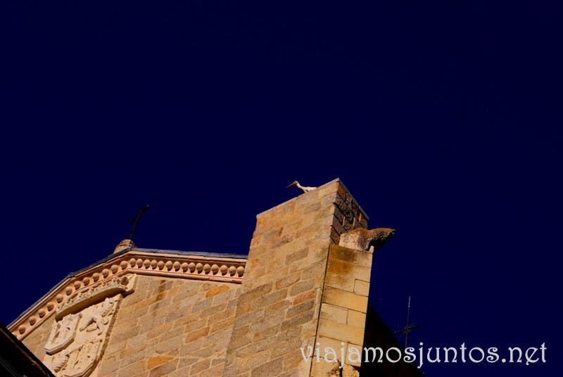 Los habitantes permanentes del Monasterio el Paular Que hacer en la Sierra de Guadarrama, donde alojarse y comer