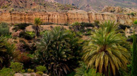 Paisaje de Ojós Ruta en coche por el Valle de Ricote, Murcia. Pasado islámico