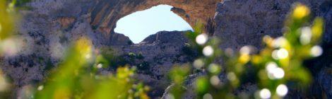 Delfín: también lo encontraréis en la ruta Rodellar - Otín Ruta circular Rodellar - pueblo abandonado Otín - Rodellar. Vistas del barranco Mascún, Dolmen Losa Mora