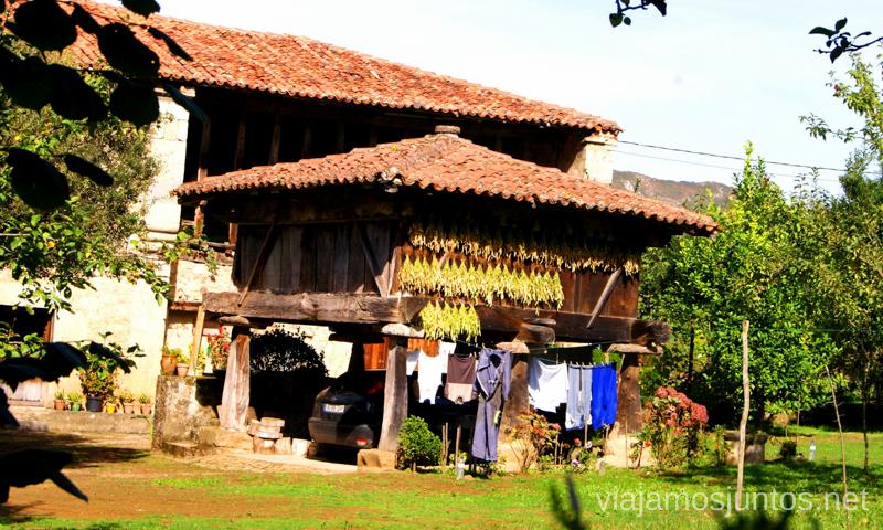 Viviendas típicas Asturias, que hacer, donde ir; montaña, playa, pueblos con encanto