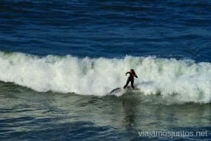 COMER AMAR Y SURFEAR. SURFEAR