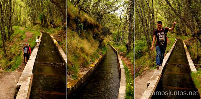 Sigue el canal, y llegaras a Hervás... casi Ruta de la Chorrera, Hervás, Extremadura.