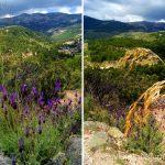 ¡Nos vemos por la Pedriza! Ruta circular por La Pedriza, Parque Regional de la Cuenca Alta del Manzanares, Madrid