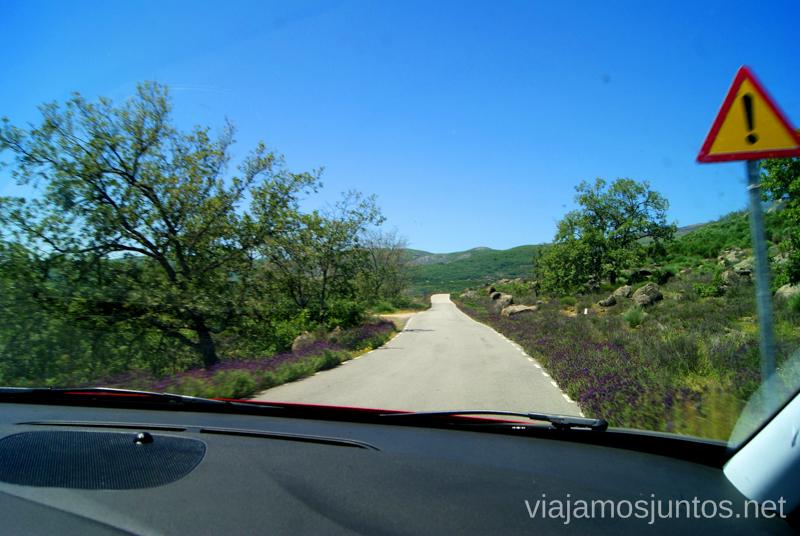 La carretera desde el Monasterio a Garganta la Olla Ruta de mediodía al Monasterio de Yuste y pueblo-conjunto artístico Garganta la Olla, Extremadura