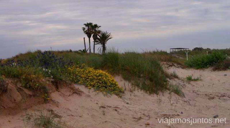 A 5 minutos de la playa... Las playas Valencianas