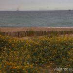 Bienvenidos a las playas Valencianas Las playas Valencianas